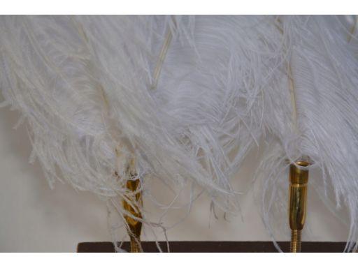 Pióropusz do zaprzęgu -strusie pióra