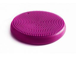 Tiguar dysk (air disc) - śliwka