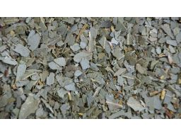 Eukaliptus liść - 100g